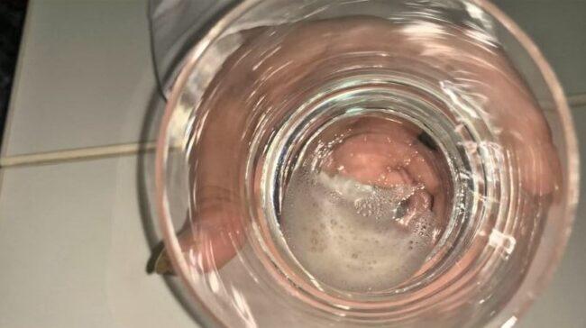 透明グラスに溜まった唾